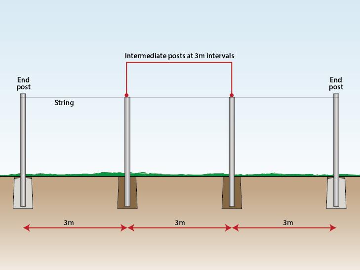 intermediate-post-distance