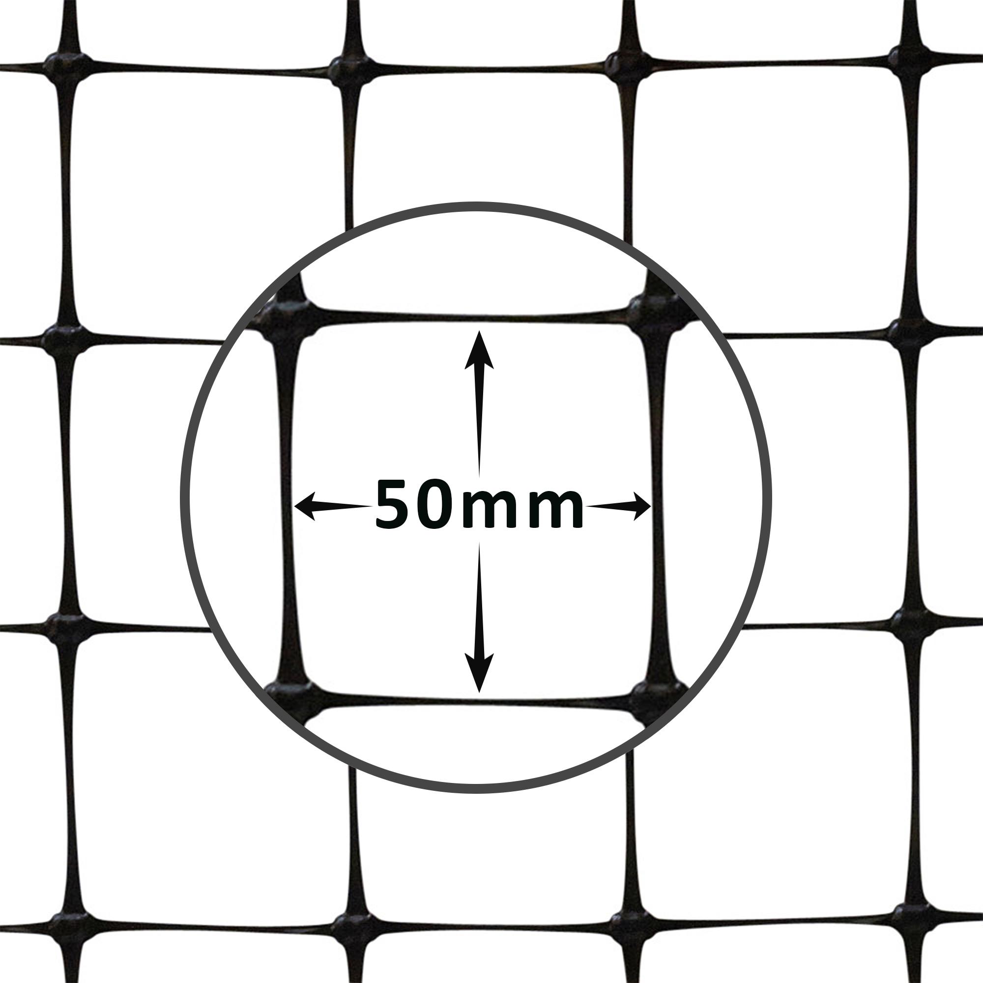 deer-fence-hole-size-50mm