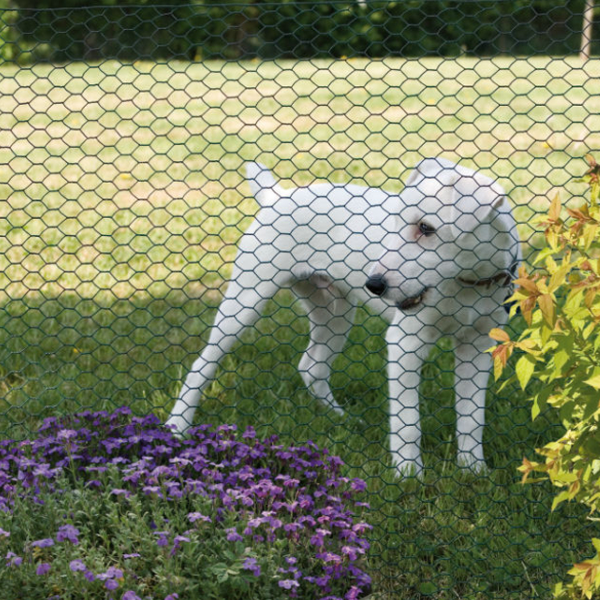 Small - Medium Dog Fencing