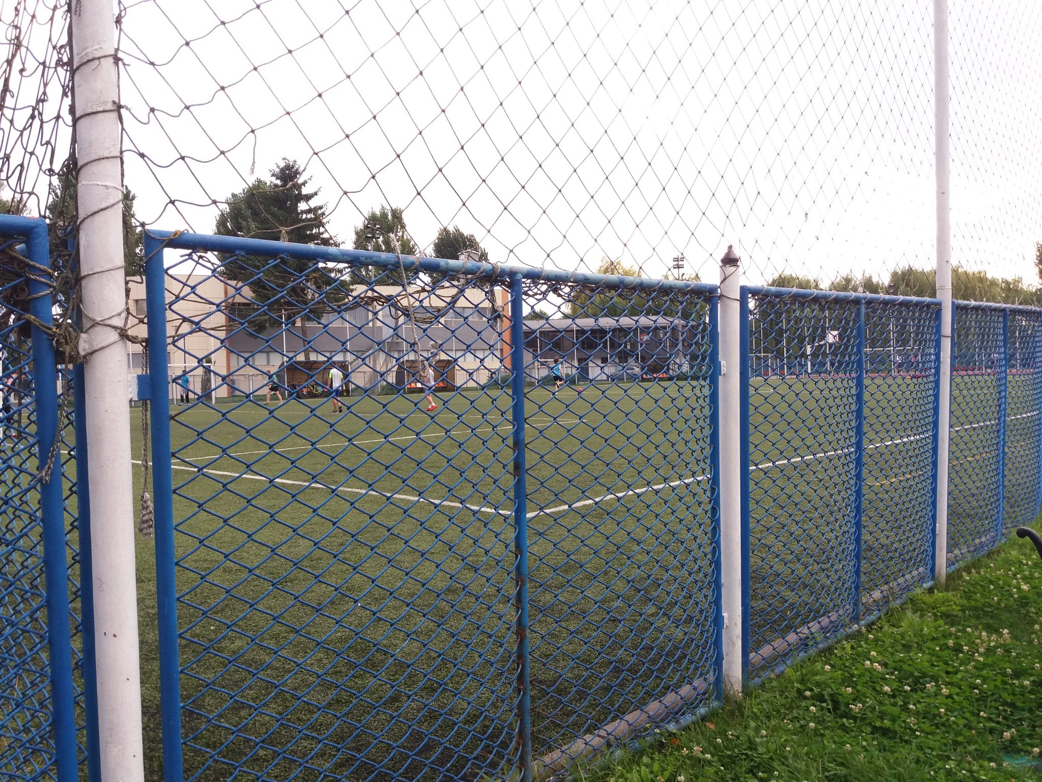 Sports Ground Fence