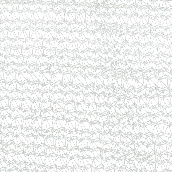 White-Debris-Netting