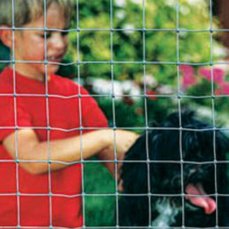 Dog & Kennel Fence