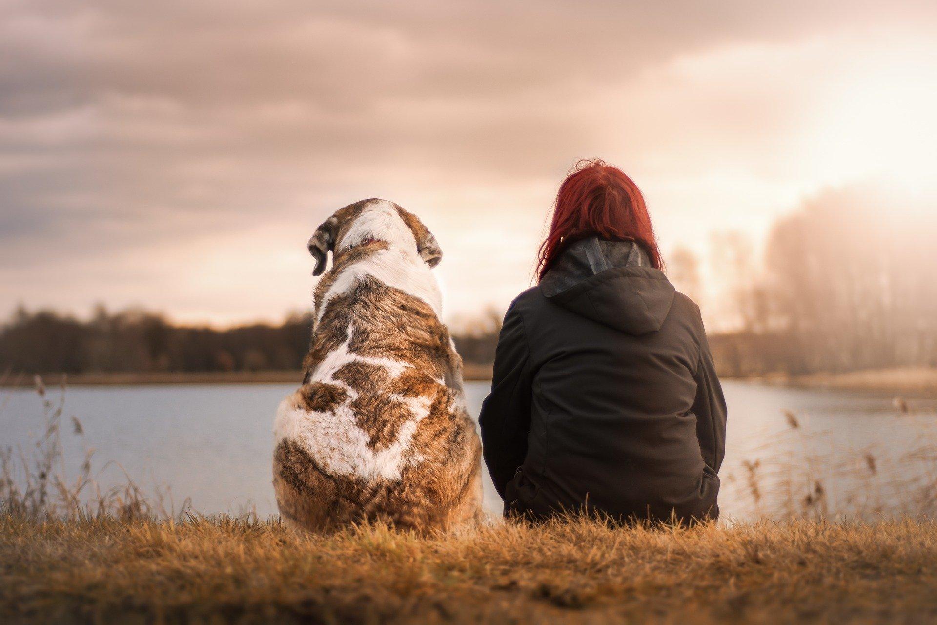 Pets Improve Mental Health
