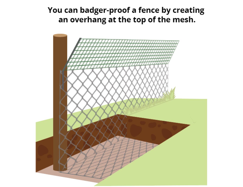 badger-proof-fence-overhang