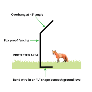How to Install a Fox-Proof Fence