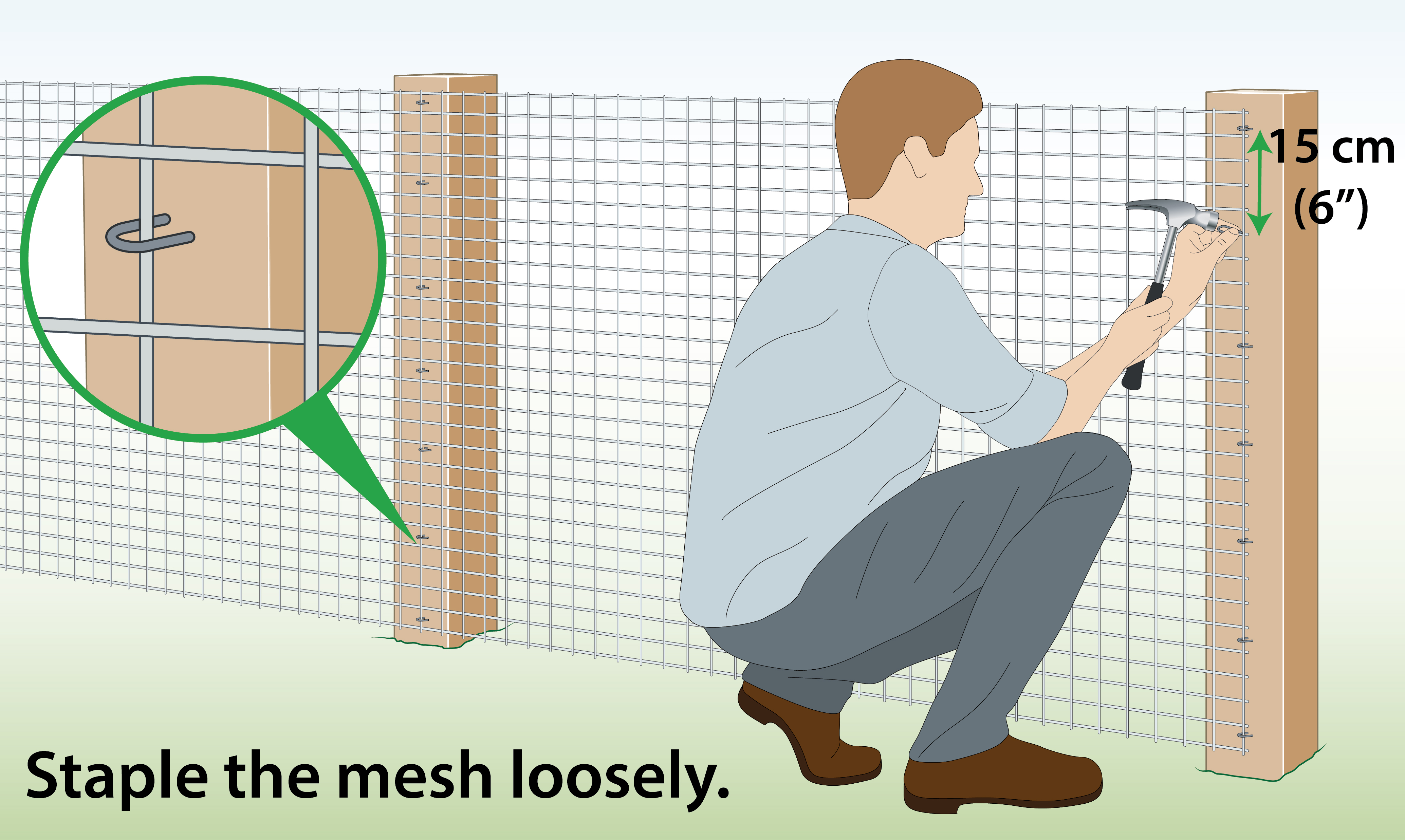attach-welded-wire-mesh-to-wooden-posts-with-staples