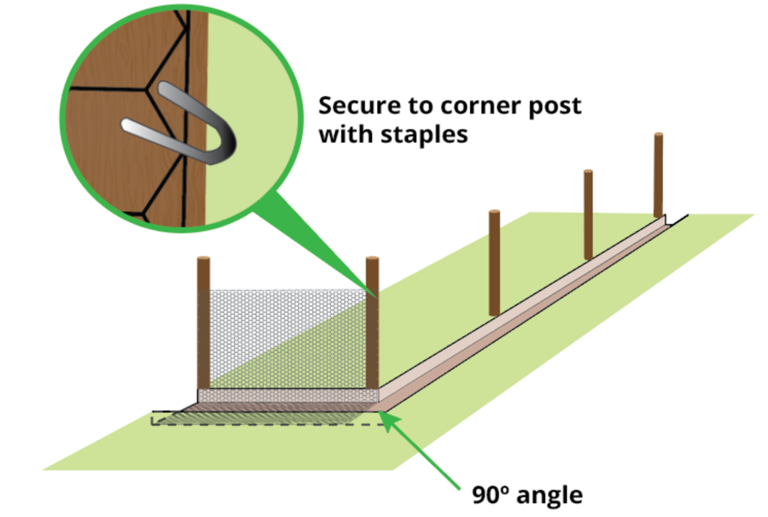 fix-rabbit-proof-fence-with-staples
