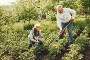 On 2nd May, Wire Fence Will Donate 100% of its Profit for 'National Gardening Week'