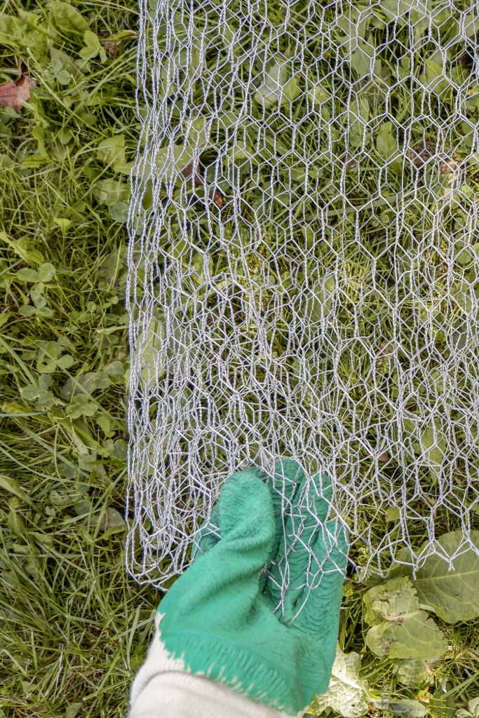 folding-chicken-wire-with-protective-gloves